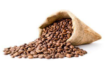 koffiebonen soorten